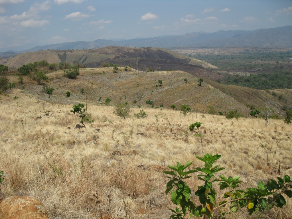 Het terrein is elf hectare groot
